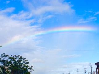見上げたら綺麗な虹が・・・   しばし見とれていました   なにか良いことが起こりそうな予感・・・