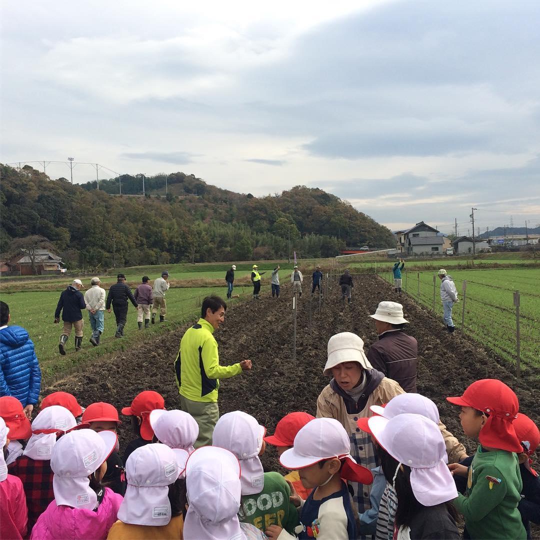 です。 竹の子幼稚園の園児と一緒に種蒔を行いました。参加された皆さんは元気をもらいました。 藤川の地域ブランドとして大切に守り育ててまいります。