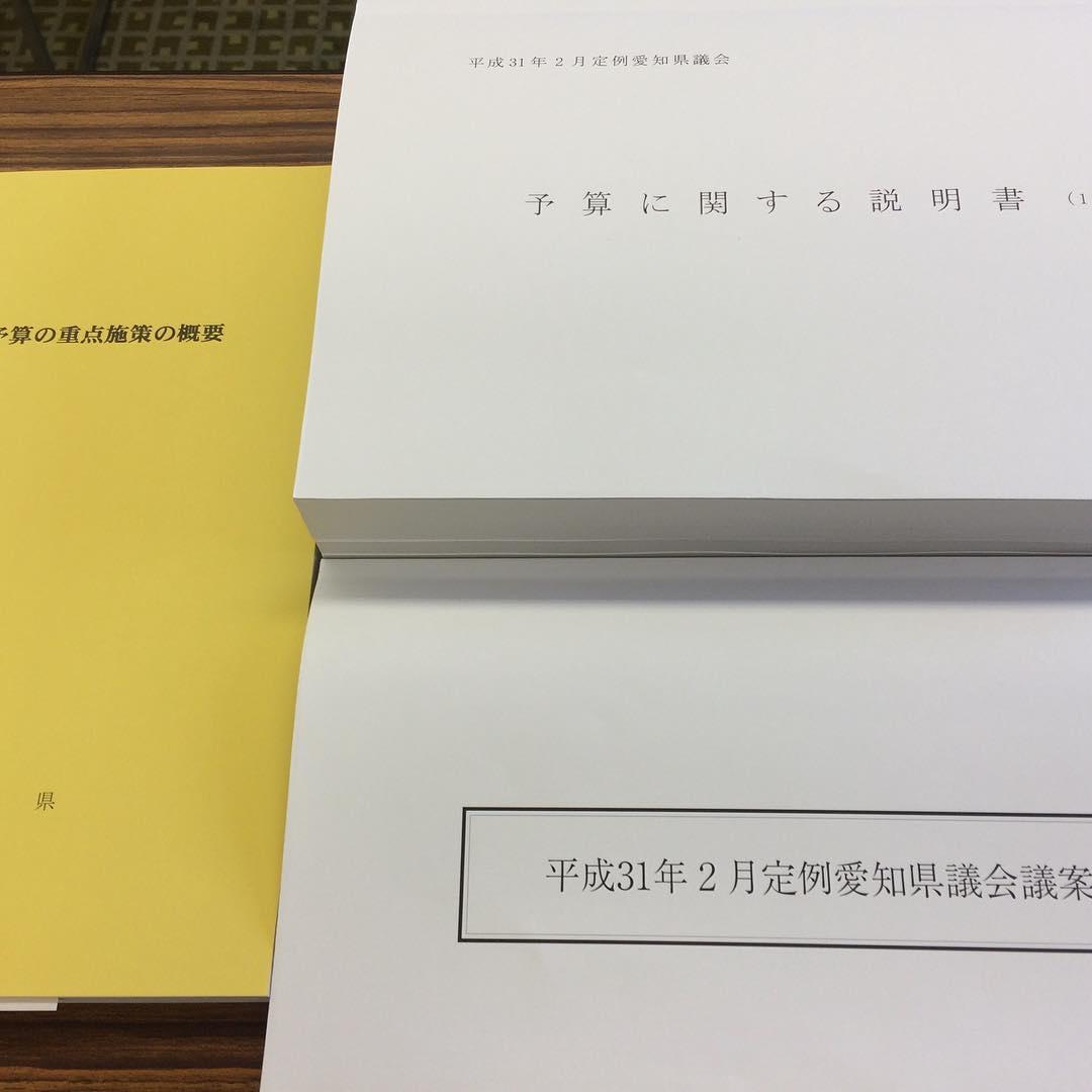 した。 これから、代表質問、一般質問と続きます。 岡崎市にも、新たな整備、予算が付きそうです。