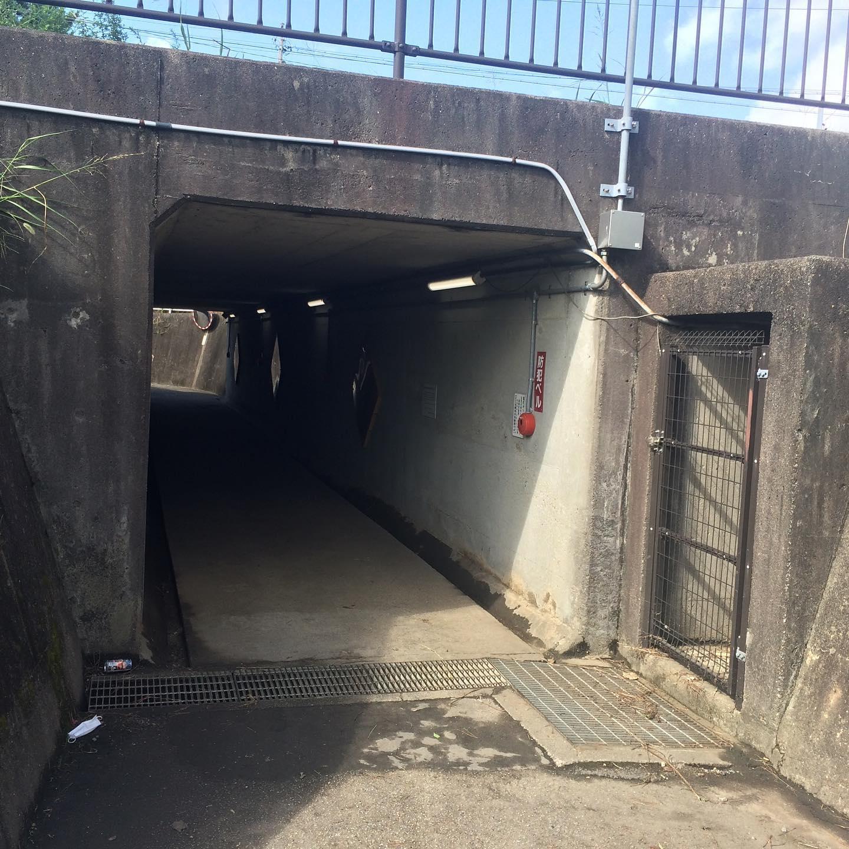 学路、なかよしトンネルが冠水したと連絡が入りました。 確認を取ったところ、ポンプは正常に稼働していたにもかかわらず排水が間に合わなかったようです。学校にも早め早めの対応を打ち合わせしました。